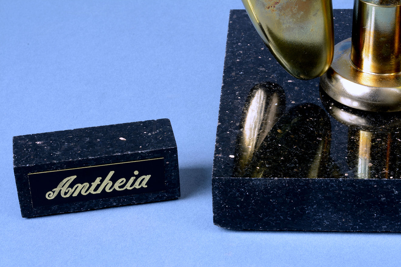 """Antheia"" engraved brass nameplate and black galaxy granite base"